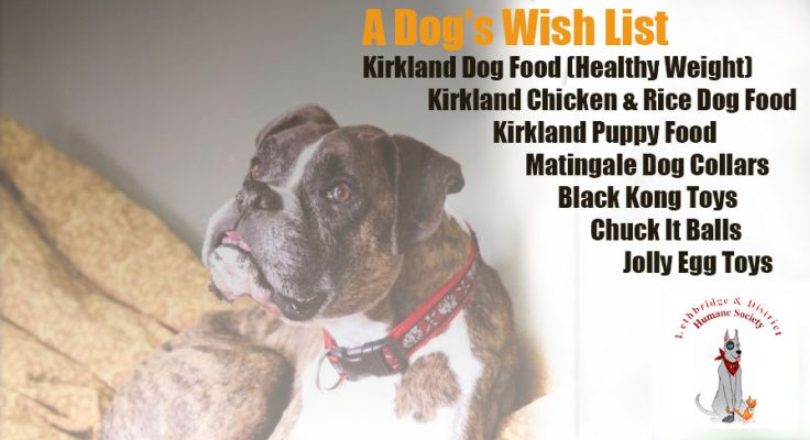 A dog's wish list