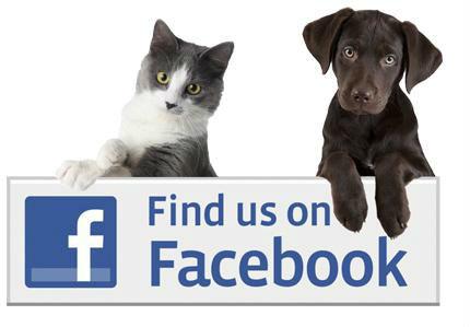 FaceBook-Logo-1-e1429203914830