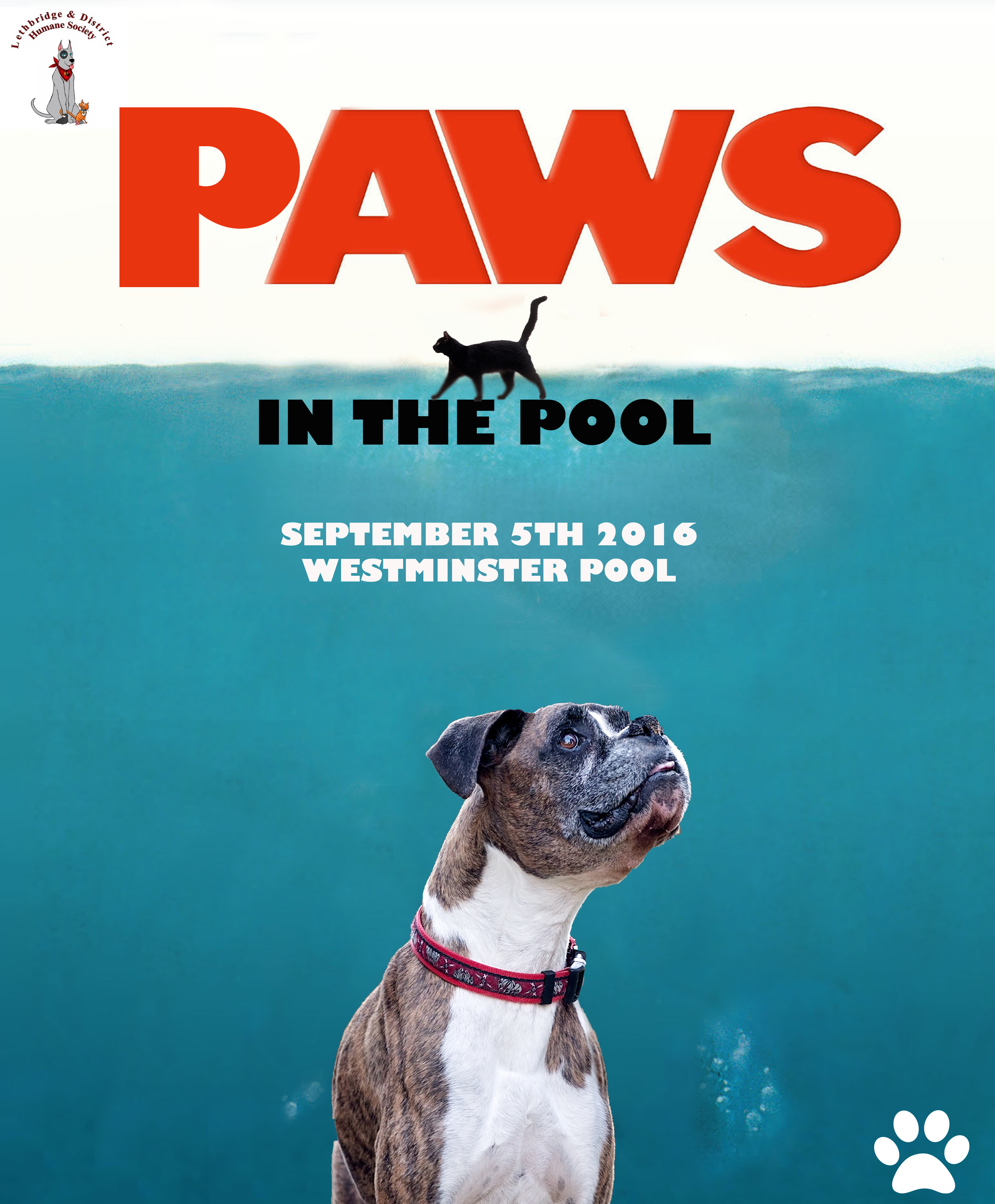 Jaws Paws in The Pool